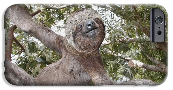 Sloth iPhone Cases - The Sloth  A Real Tree Hugger iPhone Case by Bruce Stanfield