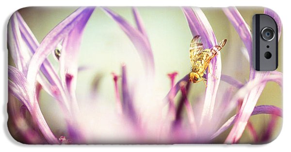 Blossom Pastels iPhone Cases - The Small Visitor iPhone Case by Hannes Cmarits