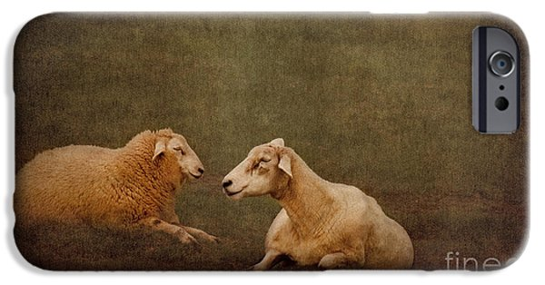 North Sea Mixed Media iPhone Cases - The smiling Sheeps iPhone Case by Angela Doelling AD DESIGN Photo and PhotoArt