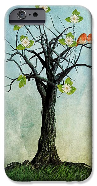 Robin iPhone Cases - The Song of Spring iPhone Case by John Edwards