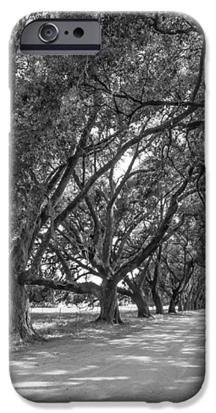 The Southern Way bw iPhone Case by Steve Harrington