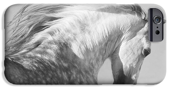 Horses iPhone Cases - The Spanish Stallion Tosses His Head iPhone Case by Carol Walker