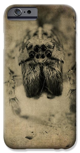 Magnification iPhone Cases - The Spider Series XIII iPhone Case by Marco Oliveira
