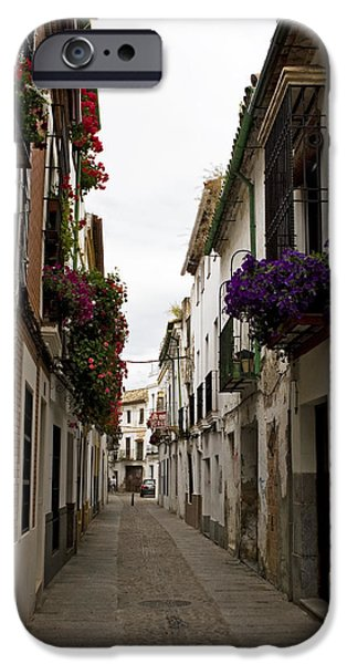 Historic Site iPhone Cases - The Street Of Flower Boxes iPhone Case by Lorraine Devon Wilke
