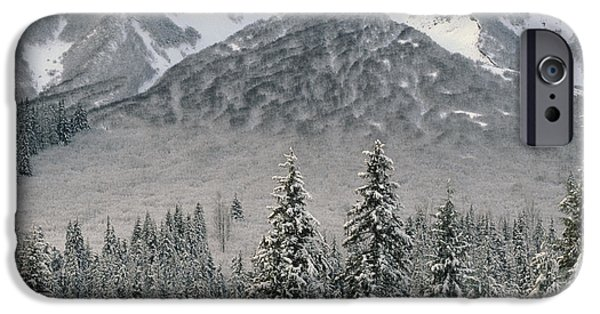 Winter Storm iPhone Cases - The Taiga Forest In Winter iPhone Case by Ron & Nancy Sanford
