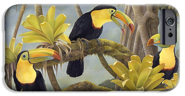 Bromeliad iPhone Cases - The Three Amigos iPhone Case by Laura Regan