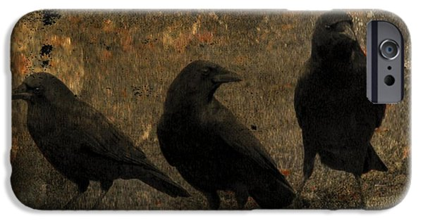 Corvid iPhone Cases - The Three iPhone Case by Gothicolors Donna Snyder
