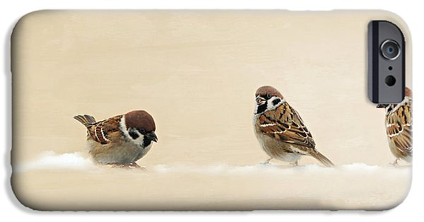 Animal Picture iPhone Cases - The three sparrows iPhone Case by Heike Hultsch