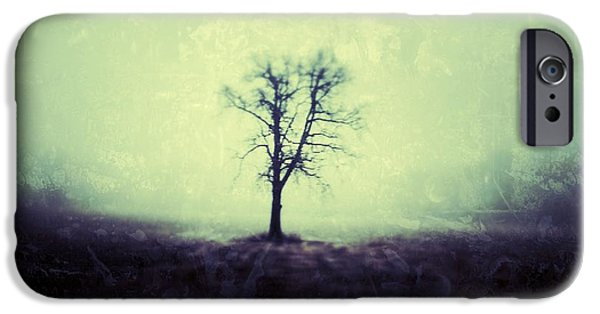 Tree iPhone Cases - The Tree iPhone Case by Jeff Klingler