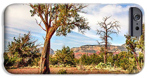 Sedona iPhone Cases - The Tree Sedona Secret Mountain Wilderness iPhone Case by  Bob and Nadine Johnston