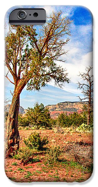 The Tree Sedona Secret Mountain Wilderness iPhone Case by  Bob and Nadine Johnston
