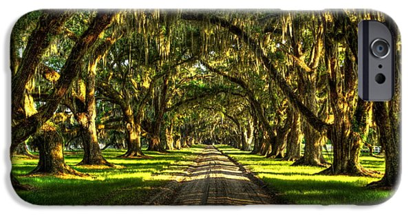Historic Site iPhone Cases - The Live Oaks of Tomotley Plantation iPhone Case by Reid Callaway