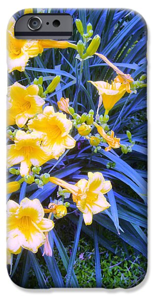 Guy Ricketts Photography iPhone Cases - The Tulips Make The Other Me iPhone Case by Guy Ricketts