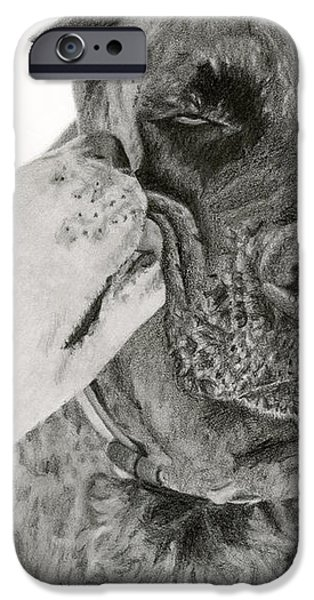 The Unconditional Love Of Dogs iPhone Case by Sarah Batalka