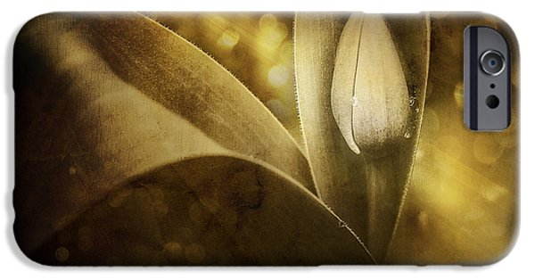 Close Up Floral iPhone Cases - The Unveiling 2 iPhone Case by Scott Norris