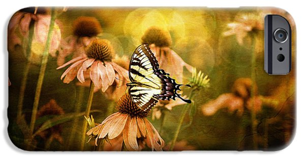 Cone Flower iPhone Cases - The Very Young At Heart iPhone Case by Lois Bryan