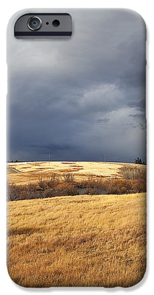 THE VIEW FROM THE SIDE OF THE ROAD iPhone Case by Theresa Tahara
