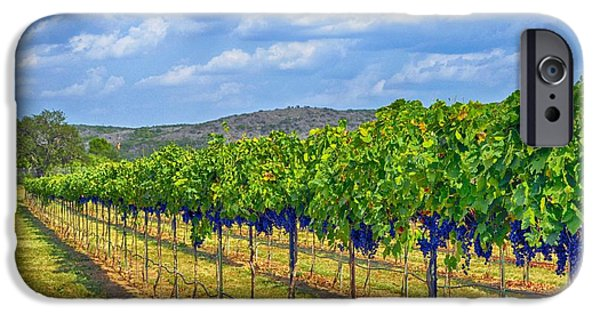 Metal Vineyard Print iPhone Cases - The Vineyard in Color iPhone Case by Kristina Deane