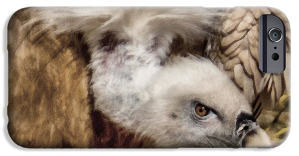Vulture iPhone Cases - The Vulture iPhone Case by Ernie Echols