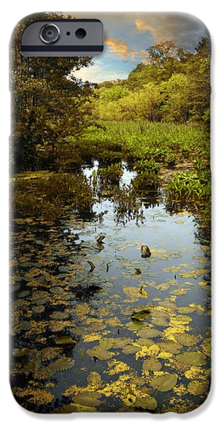 Wetlands iPhone Cases - The Wetlands iPhone Case by Jessica Jenney