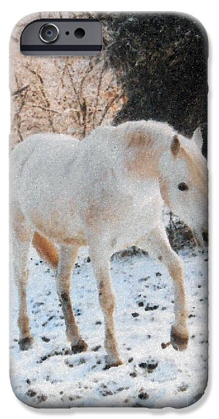 Paso Fino Stallion iPhone Cases - The White Stallions Winter Walk iPhone Case by Patricia Keller