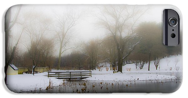 Willow Lake iPhone Cases - The Willows in Winter - Newtown Square Pa iPhone Case by Bill Cannon