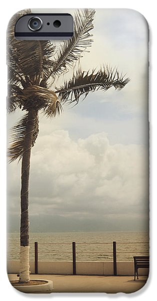 Park Benches iPhone Cases - The Wind in My Hair iPhone Case by Laurie Search