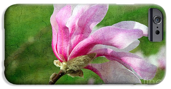 Flora Mixed Media iPhone Cases - The Windblown Pink Magnolia - Flora - Tree - Spring - Garden iPhone Case by Andee Design