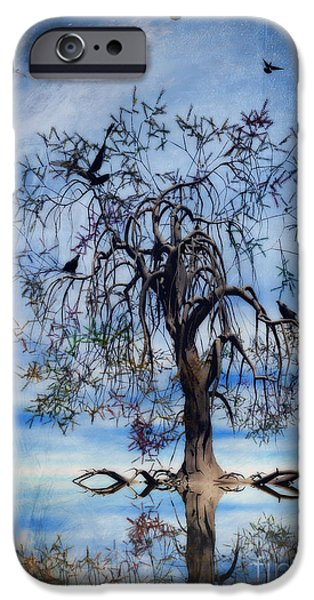 Chaos iPhone Cases - The Wishing Tree iPhone Case by John Edwards
