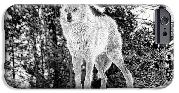 Daysray Photography iPhone Cases - The Wolf  iPhone Case by Fran Riley