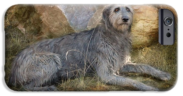 Dogs iPhone Cases - The Wolfhound  iPhone Case by Fran J Scott