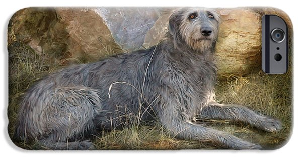 Working Dogs iPhone Cases - The Wolfhound  iPhone Case by Fran J Scott