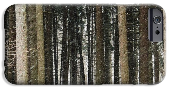 Todd Sherlock Photographs iPhone Cases - The woods number one iPhone Case by Todd Sherlock