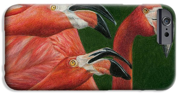 Colored Pencils iPhone Cases - There are always Critics iPhone Case by Pat Erickson