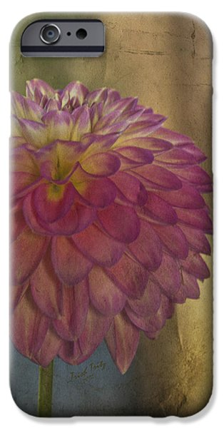 There's Always Next Year iPhone Case by Trish Tritz