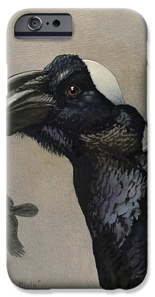 Ethiopia iPhone Cases - Thick Billed Raven iPhone Case by Louis Agassiz Fuertes