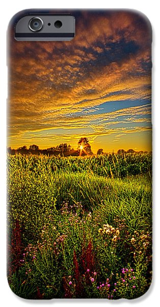 Farming Photographs iPhone Cases - Think I Will Sit a Spell iPhone Case by Phil Koch