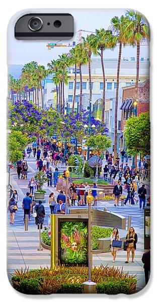 Jacaranda Tree iPhone Cases - Third Street - Santa Monica iPhone Case by Chuck Staley