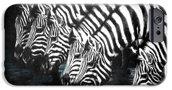 Pen And Ink iPhone Cases - Thirsty Zebras  iPhone Case by Sandi OReilly