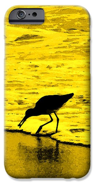 Birds Digital iPhone Cases - This Beach Belongs To Me iPhone Case by Ian  MacDonald
