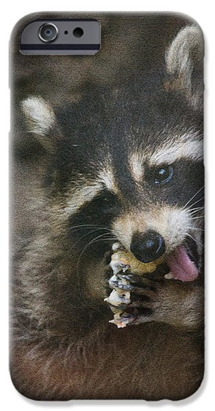 Raccoon Digital Art iPhone Cases - This is a real sticky snack iPhone Case by Eti Reid