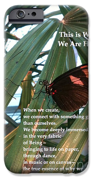 Why We Are Here iPhone Cases - This is Why We Are Here iPhone Case by Cristina Norcross