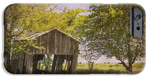 Shed iPhone Cases - This Old Barn iPhone Case by Joan Carroll