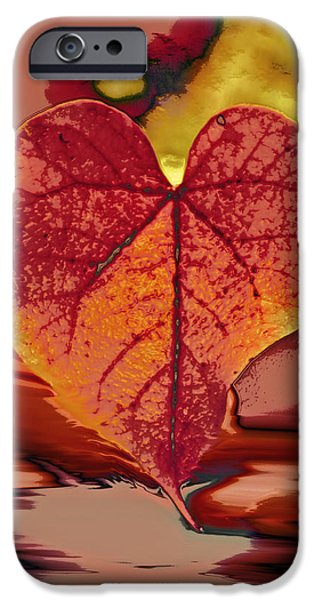 This One is for Love iPhone Case by Linda Sannuti