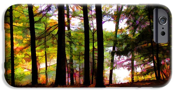 Walden Pond iPhone Cases - Thoreaus View of Walden Pond iPhone Case by Tom Christiano