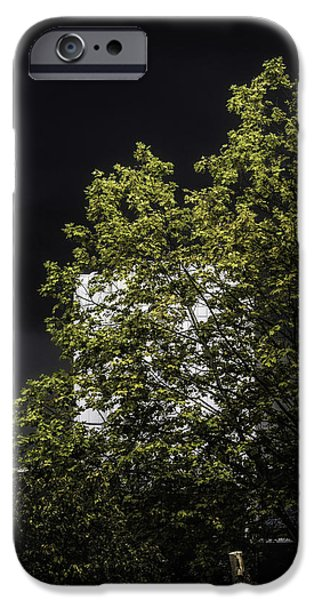 White House iPhone Cases - Thors Stormy Mood iPhone Case by Romuald Gordon