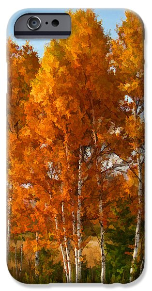 Autumn Foliage iPhone Cases - Three Birches iPhone Case by Christopher Arndt