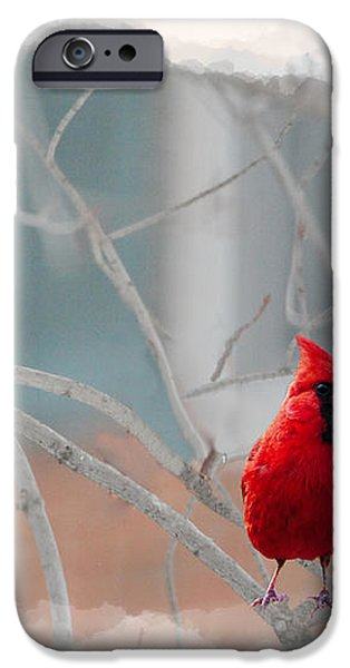 three cardinals in a tree iPhone Case by Dan Friend