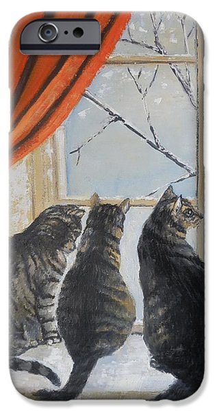 Ledge iPhone Cases - Three cats with gray fur  iPhone Case by Maria Karalyos