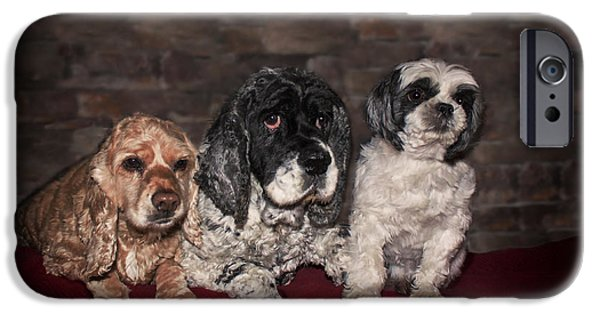 Women Together iPhone Cases - Three Dog Night iPhone Case by Janice Rae Pariza